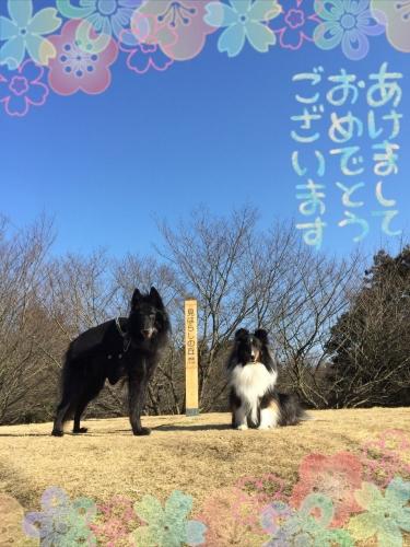 あけおめ画像2015