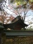 穴切神社 (3)