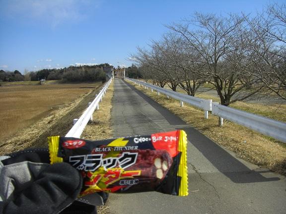20150117菅生沼 ( 6)