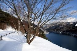 1月4日奥木曽湖2