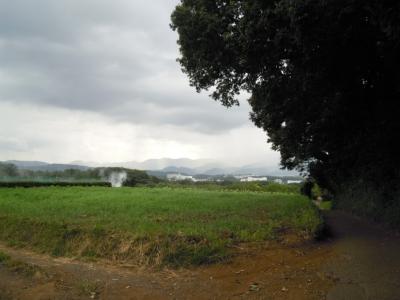 遠藤原に行く道