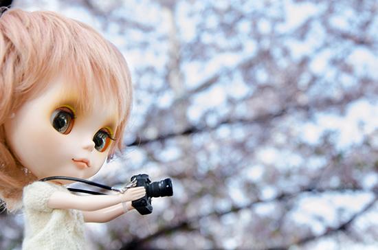 20180401ナナシお花見-1