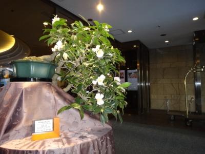 椿山荘の玄関