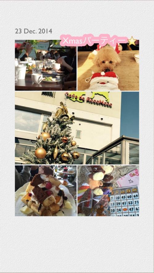 IMG_0878ロコモコクリスマス_convert_20141225191616
