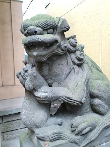 hibusejinka.jpg