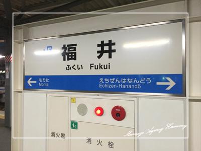 201412_meeting_fukui_5.jpg