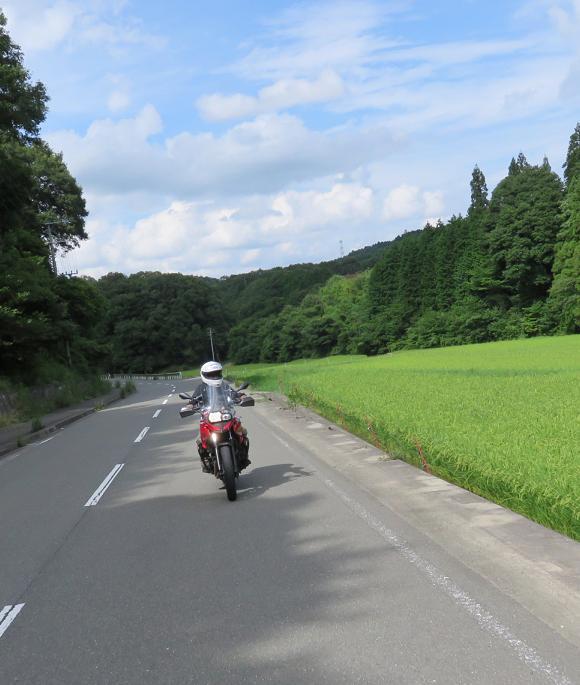 IMG_6463b.jpg