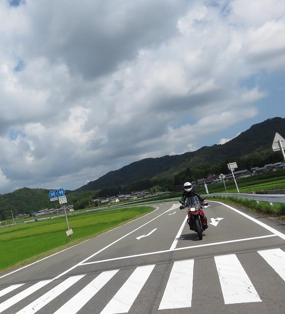 IMG_6493b.jpg