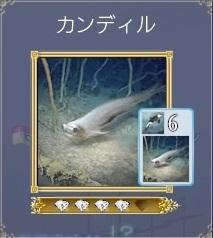 大航海時代 Online_1578
