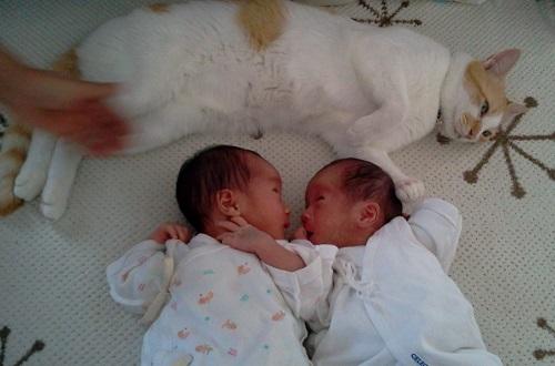 福ちゃんと赤ちゃん