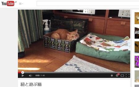 メイたんの動画