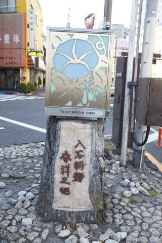 asagao20150123.jpg