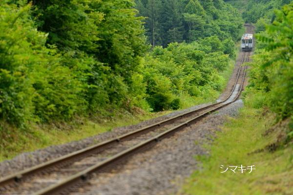 DSC_7828-bbu.jpg