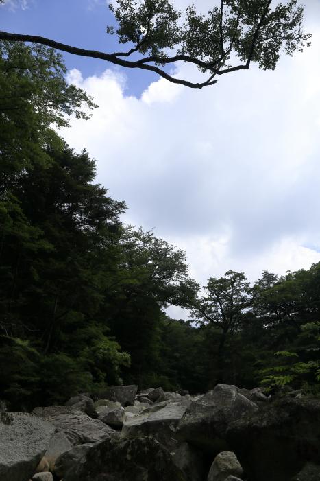 2015_0802_19.jpg