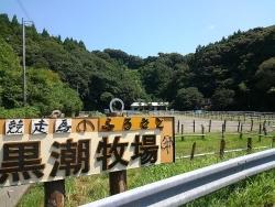 2708黒潮牧場、桂浜 (24)