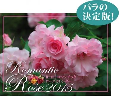 calendar2015_m01[1]