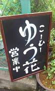 こーひーゆう花 (6)