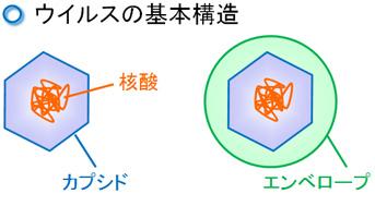 kyoyzai-e2.jpg