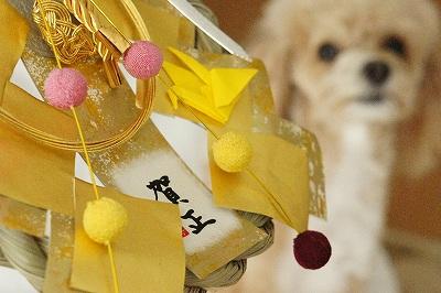 2015お飾り2 - コピー