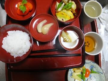 れんげ米穂揃い5