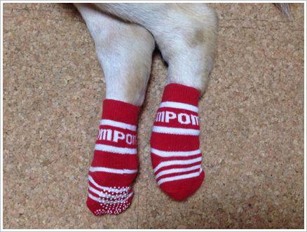 滑り止め付き靴下