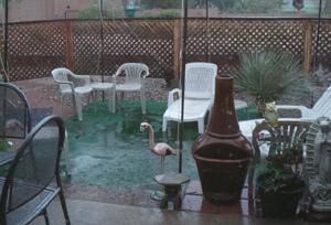 2006.9.2 豪雨 b.jpg