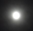 満月b.jpg