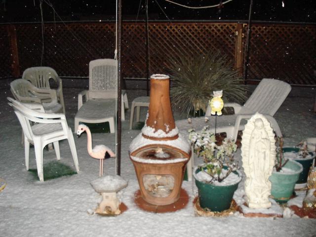 雪 1.19.jpg
