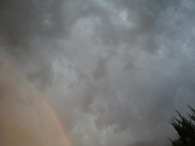 虹と猫a.jpg