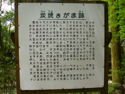 県民の森③