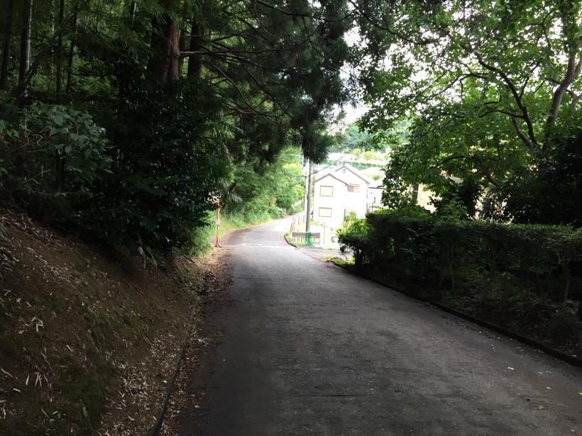 oneryokuwaki16.jpg