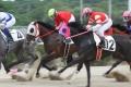 180520 地方競馬JCSワイルドカード 山崎誠士騎手-05