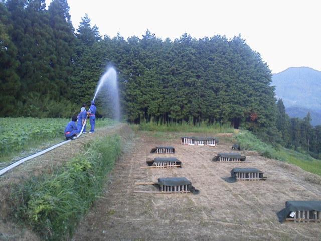 27815mizumaki.jpg