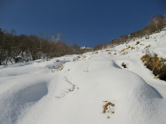 登山道空は青いよ