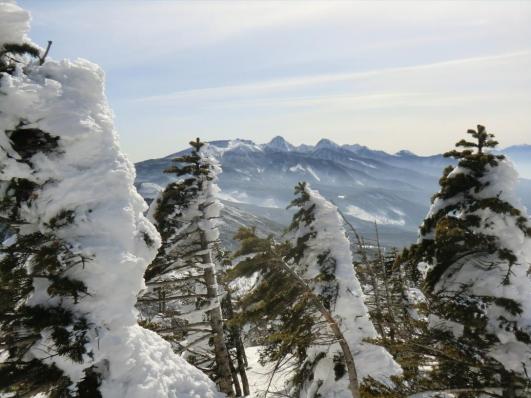 南峰から南八ヶ岳