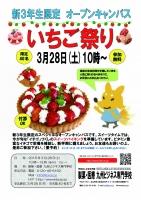 3月苺祭りチラシのコピー