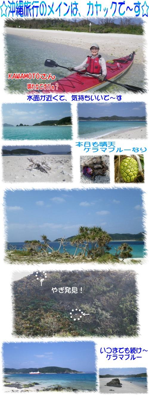 沖縄旅行のメイン