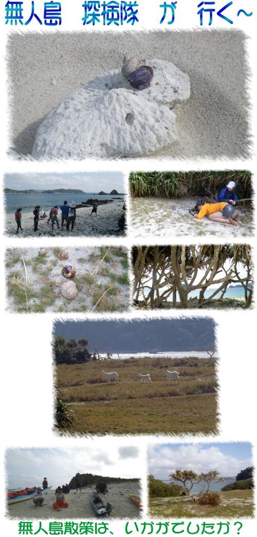 無人島 探検隊