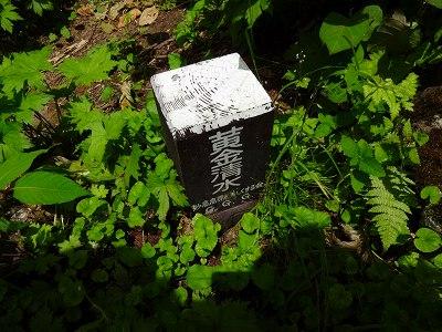 妙高 (490)