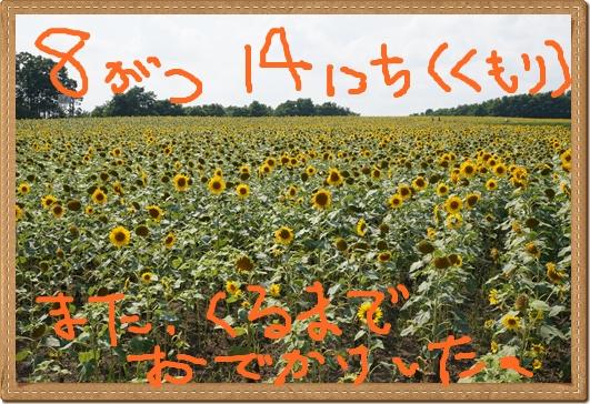 150815-5.jpg