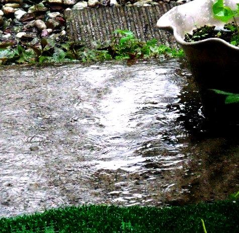 20150817 富士山と恵みの雨 099-2
