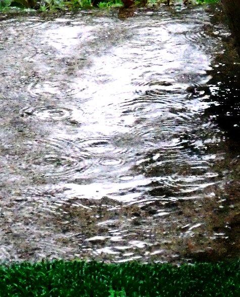 20150817 富士山と恵みの雨 099-3