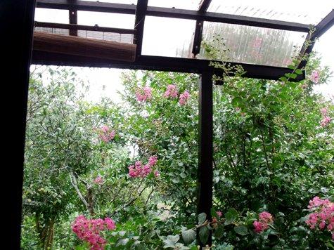 20150817 富士山と恵みの雨 115-2