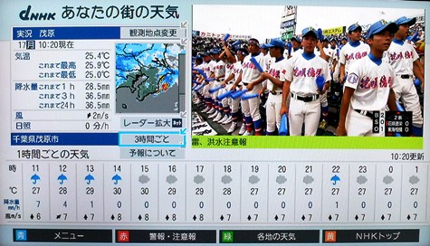 20150817 富士山と恵みの雨 134-2