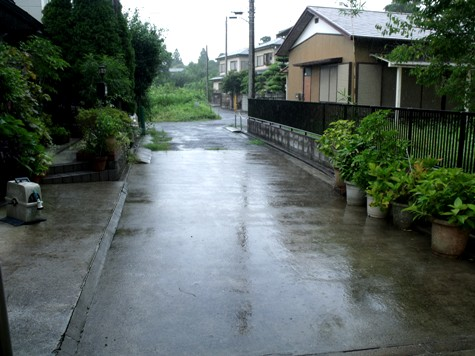 20150817 富士山と恵みの雨 008-2
