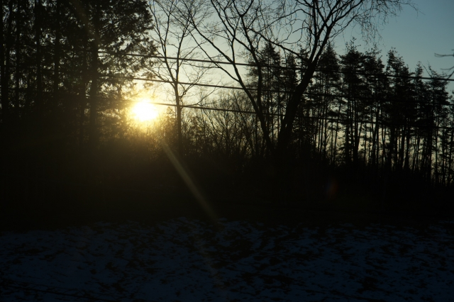 秘密基地-日の出