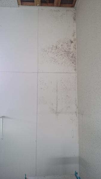 雨漏り補修14.12.27①