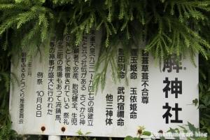 紐解(ひもとき)神社(松江市西尾町)28