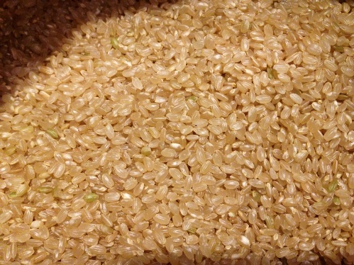 きたくりん玄米