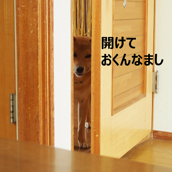 20150814-002.png